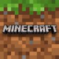 Mr.minecraft